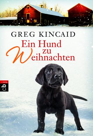 Greg Kincaid: Ein Hund zu Weihnachten