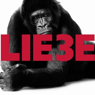Hagen Rether: Hagen Rether, Liebe 3