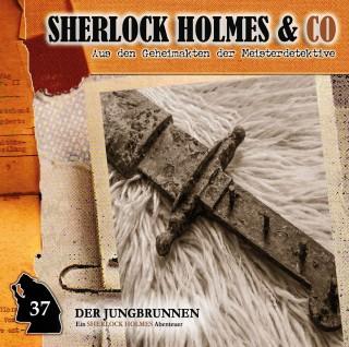 Markus Topf: Sherlock Holmes & Co, Folge 37: Der Jungbrunnen, Episode 2